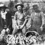 The cringeworthy history of Alberta's Fisheries- And how we are barely hanging on.